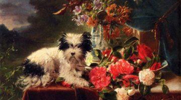 Adriana Johanna Haanen | Camellias and a terrier on a console