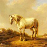 Eugène Joseph Verboeckhoven | A White Stallion in a Landscape