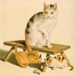 Gottfried Mind | Katzenmutter mit ihren Jungen