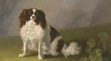Jacob Philipp Hackert | King Charles Spaniel in einer Landschaft