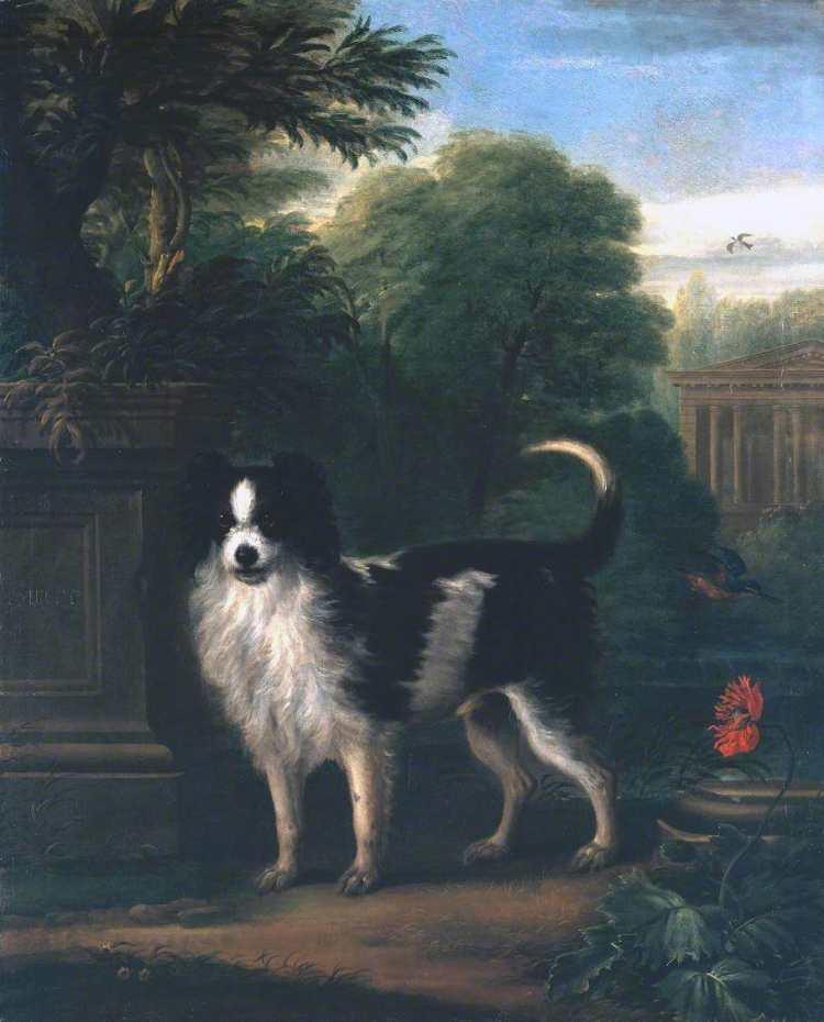 John Wootton | Muff, a Black and White Dog, ca. 1740-50 | Photo credit: Tate