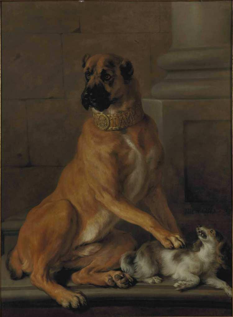 Nicasius Bernaerts | Portrait of Tambon, dog of the Duke of Vendôme, 1665