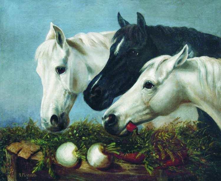 Nikolai Jegorowitsch Swertschkow | Horses' Treat
