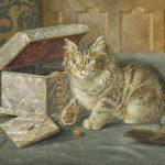Wilson Hepple | Neugieriges Kätzchen