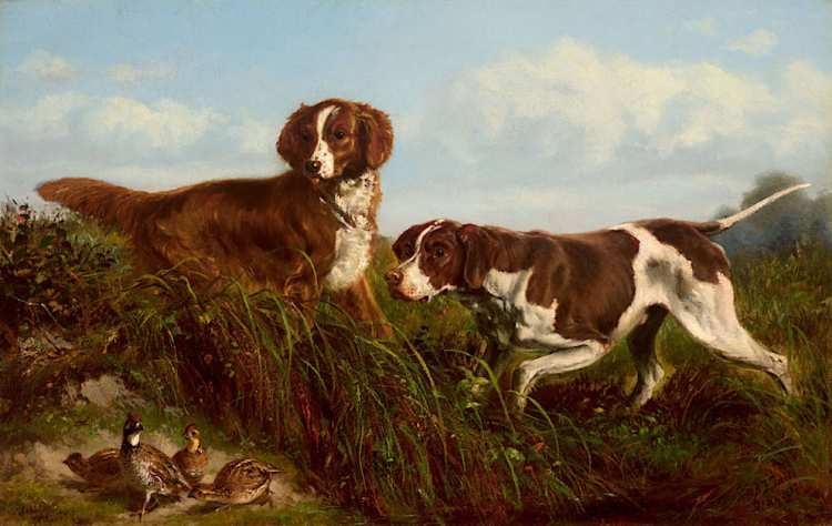 Arthur Fitzwilliam Tait | Setters and Quail, 1871 | Privatbesitz