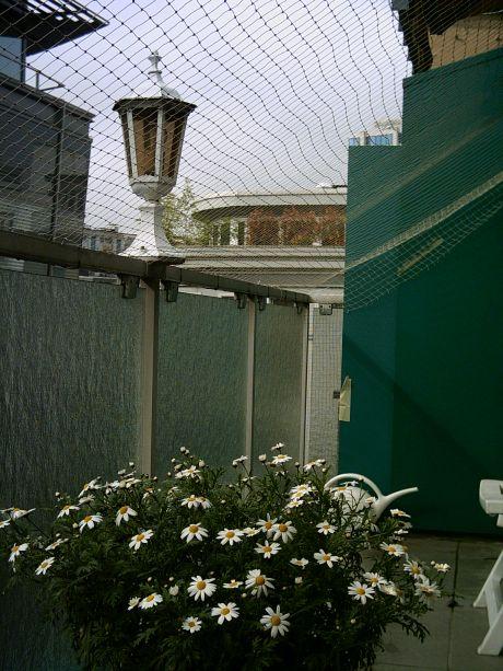 Katzenschutznetz für den Balkon | © Catplus.de