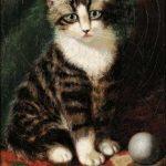 Sidney Lawrence Bracket | Getigertes Kätzchen