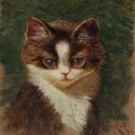 Sidney Lawrence Bracket | Porträt eines Tigerkätzchens, 1897