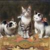 Carl Reichert | Cat Family