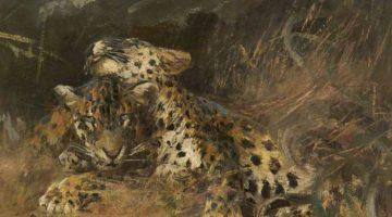 Cuthbert Edmund Swan | Leopard Cubs