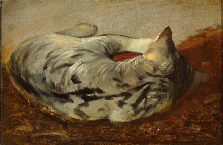 Friedrich Gauermann   Liegende getigerte Katze