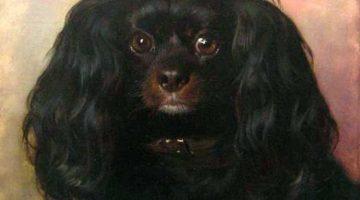Friedrich von Amerling | Hundeporträt