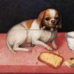 Giovanna Garzoni   Still Life with Small Dog, 1648   Galleria Palatina – Palazzo Pitti
