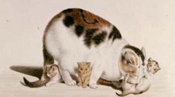 Gottfried Mind   Katzenmutter mit drei Jungen