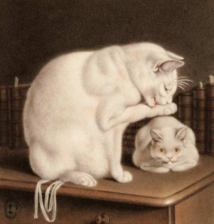 Gottfried Mind | Zwei Katzen auf einem Tisch