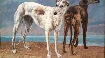 Gustave Courbet | Count de Choiseul's Greyhounds | Privatbesitz