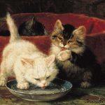 Henriëtte Ronner-Knip | Kittens