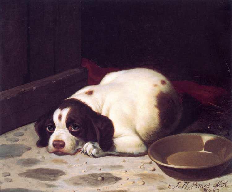 James Henry Beard | Where's Dinner?, 1882 | Privatbesitz