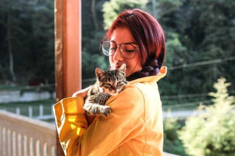 Katzen- versus Hundemenschen