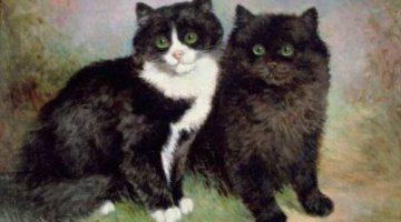 Lilian Cheviot | Katzenpaar