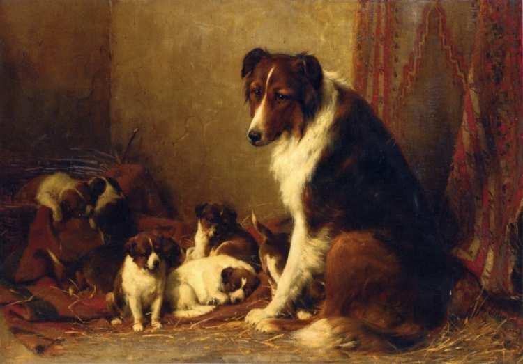 Otto Eerelman | Collie-Hündin mit ihren Jungen