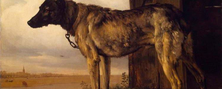 Paulus Potter, Wolfshund, 1650/52; Eremitage St. Petersburg