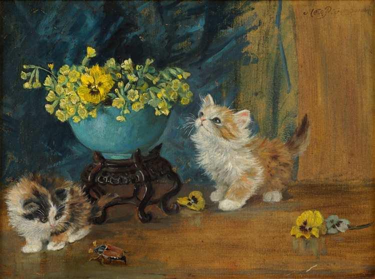 Meta Plückebaum | Neugierige Kittens