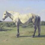 Rosa Bonheur | A Grey Horse in a Field, 1873 | Musée des Beaux-Arts de Rouen