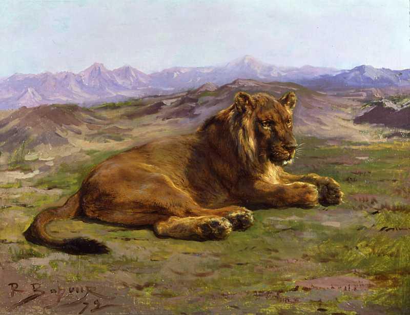 Rosa Bonheur | Couching Lion, 1872