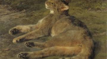 Rosa Bonheur | Wild Cat