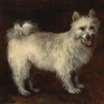 Thomas Gainsborough | Spitz Dog, ca. 1765