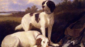Thomas Hewes Hinckley | Ruhende Setter